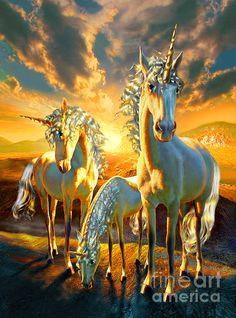 Famille de Licornes <3 <3 <3 ****