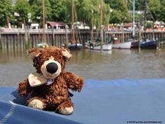 Orso in Hamburg representing the Teddy & Friends. Teddy Bear, Friends, Travel, Animals, Hamburg, Amigos, Viajes, Animales, Animaux