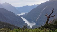 Pristine splendor on sailing through New Zealand's Doubtful Sound: Travel Weekly