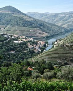 10 things to expect from Intrepid's food-focussed tour through Porto, Lisbon, and the Alentejo region -   via The Cutlery Chronicles 20-06-2017 | Never been on an organised group trip abroad before? Here's what you can expect from a food-focussed tour through Portugal with Intrepid Travel.