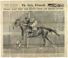 On 5 April Phar Lap, winner of the 1930 Melbourne Cup, died in the USA. Many Australians believe he had been poisoned. Most Beautiful Horses, Pretty Horses, Derby Horse, Types Of Horses, Sport Of Kings, Thoroughbred Horse, Vintage Horse, Racehorse, Horse Racing