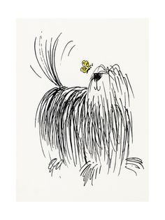 Shaggy Dog with Butterfly Art Print at AllPosters.com