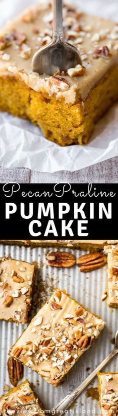 Pecan Praline Pumpkin Cake is my favorite new pumpkin recipe, and that's saying a lot. This cake has the perfect tender crumb, a lightly spiced pumpkin flavor, and an out of this world pecan praline frosting --- get ready to drool...#cake #pumpkin #pumpkindessert #falldessert #fall #sheetcake #Halloween #Thanksgiving #caramel