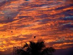 twilight sky - Google Search