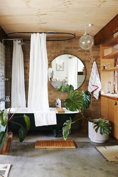 """Shower plants— According to Pinterest, searches for """"shower plants"""" have spiked by 302%—and it's easy to see why. Not only do shower plants turn your bathroom into a veritable oasis, they also boast some pretty amazing health benefits!"""