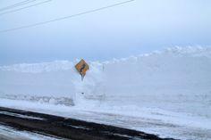 7 Best Orangeville In Winter images in 2013 | Birth, Bus
