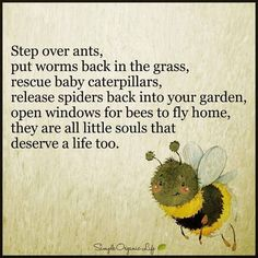 So sweet it's worth sharing! #bees #insects #survival #preservation #life #thankyou