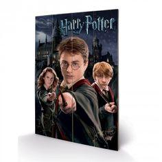 Panneau en Bois Harry Potter Harry Ron Hermione