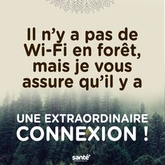 Speed Dating - There is no wifi in the woods but i assure you there is an extraordinary connect Image Citation, Quote Citation, Fact Quotes, Love Quotes, Inspirational Quotes, Positive Attitude, Positive Quotes, Escape Quotes, Unity Quotes