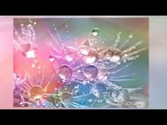 Using Law of Attraction for focus yourself into success Austin Texas September 19, 2015 Thank you to the Source of this information, Abraham-Hicks For more i...