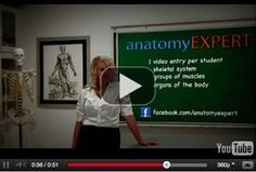 Awesome anatomy resource -- great root words for memory work.