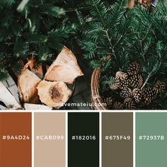 A collection of splendid color schemes for you to find color inspiration all year round Stay tuned for more! Pantone Colour Palettes, Color Schemes Colour Palettes, Colour Pallette, Pantone Color, Earthy Color Palette, Brown Color Schemes, Printable Christmas Coloring Pages, Stoff Design, Color Balance