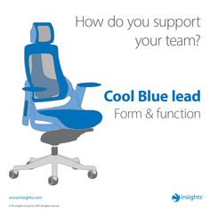 Cool Blue lead - Form and Function Insights Discovery, Group Dynamics, John Maxwell, Citizenship, Love My Job, Human Resources, Personality Types, Champs, Business Ideas
