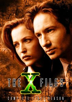 The X-Files starring David Duchovny & Gillian Anderson (another all-time fav!) - I loved it all!  I appeared as an extra in Season 2, The Red Museum.