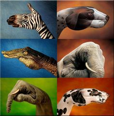 Paintings on Hand to get animals shape ( For more funny images, visit www.FunnyNeel.com ). Follow us www.pinterest.com/webneel/funny-neel-com