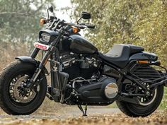 117 Best 2018 Hd Softail Fat Bob Fxfb Images Harley