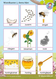 Shared with Dropbox Math For Kids, Science For Kids, Bee Life Cycle, Bee Games, Bee Activities, Petra, Dutch Language, Grande Section, Halloween Crafts For Kids
