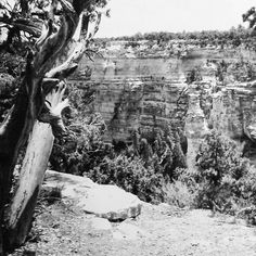 Black and White-Grand Canyon