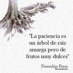 La paciencia es un árbol #Instagram de #proZesa