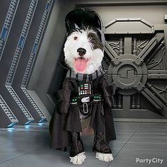 Any Star Wars fan will get a kick out of seeing their pooch in a Darth Vader Dog Costume. #partycity #halloween