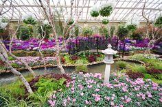 Fitzroy Gardens, Melbourne, Australia