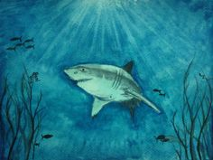 Harinarayan Sreenivasan Watercolor Painting. Wildlife/Botaical, Nature Art - Shark