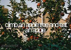 climb an apple tree and eat an apple