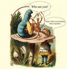 John Tenniel, Alice And Wonderland Quotes, Adventures In Wonderland, Wonderland Party, Manado, Caterpillar Quotes, Fail Blog, Thing 1, Lewis Carroll