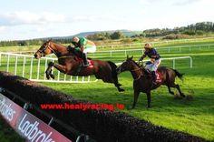 Benemeade & @paulcarberry win @GowranPark1 for Noel Meade. See gallery http://www.healyracing.ie