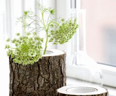 Stem Bowl and Vase by Ferm Living  ~  These beautiful stem bowls and vases all look beautiful on the windowsill - they are carved in a wooden stem. Leaving the bark on gives the bowl and vase a rugged feel. It is like bringing a piece of nature indoors. They have a removable porcelain cup inside.
