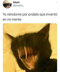 Funny Spanish Memes, Spanish Humor, Funny Quotes About Life, Good Life Quotes, Blackpink Memes, Funny Memes, 9gag Funny, Walmart Funny, Mexican Memes
