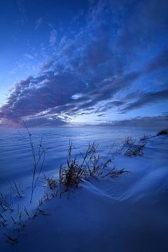 Solitaire Moments Dressed in Blue Poster by Phil Koch