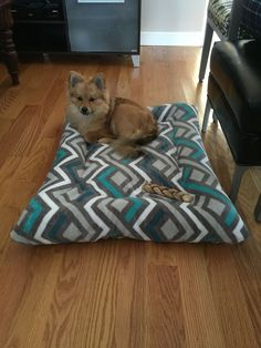 Diy dog bed with old pillows and $5 Walmart blanket