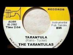 TARANTULA - THE TARANTULAS Music Land, Kinds Of Music, Rock N Roll, Product Design, Entertainment, Bike, Sneakers, Youtube, Bicycle