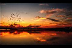 A swift sunset.   author: Kirienko Oleg