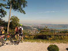 Biken im Naherholungsgebiet einer Grossstadt