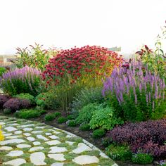 Create a best-on-the-block butterfly garden with these must-have plants that butterflies love. Including plants like phlox and butterfly bush will surely attract butterflies to your garden. Pruning Shrubs, Bushes And Shrubs, Garden Shrubs, Lush Garden, Garden Care, Garden Beds, Flower Garden Borders, Butterfly Garden Plants, Backyard Garden Design