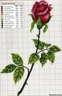 Kanaviçe Gül Desenleri Rose cross stitch pattern and color chart. Another rose that would be amazing as a black/grey rose. Cross Stitch Needles, Cross Stitch Rose, Cross Stitch Flowers, Cross Stitch Charts, Cross Stitch Designs, Cross Stitch Patterns, Crochet Cross, Filet Crochet, Canvas Template