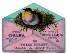 Vintage Images - Bird with Nest in Envelope - The Graphics Fairy