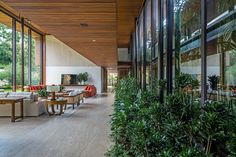 jacobsen arquitetura visually blends inside and outside with são paulo house