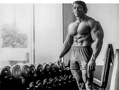 Arnold is/was the pinnacle of aesthetics (Let me aware you) (gtfih) (pics) - Bodybuilding.com Forums