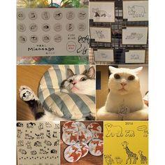 この缶バッジが欲しくて❤︎ 勉強会終わってから @rbranch603 でやってる #中島良二 さんのミニ原画展に行って来た♩ @ryuryu_zakka のアニマルパレードシリーズに今年からネコちゃんも仲間入りラッキーな事に、ハチワレ柄と白ネコちゃんがいる❤︎ 気になる方は行ってみてね〜♩ #リュリュ #八おこめ #ねこ部 #cat #ねこ #缶バッジ