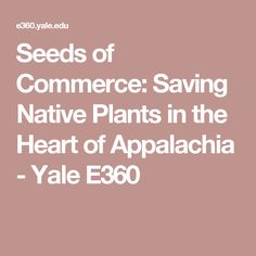 Seeds of Commerce: Saving Native Plants in the Heart of Appalachia - Yale E360