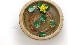 Chai Soong Ng Little Lotus and dovetail small goldfish (Acrylic on Resin)