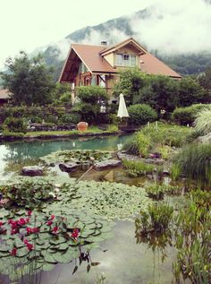 Cottage Fantasy swimming pool