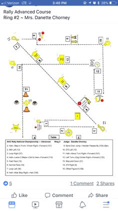 Dog Kennel Designs, Dog Competitions, Dog Training Courses, Dog Agility, Dog Show, Working Dogs, Dog Life, Best Dogs, Maps
