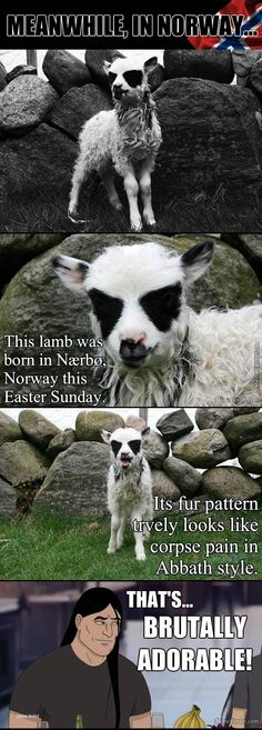 Lamb Born With Corpse Paint. Metal