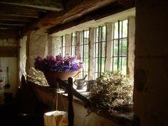 flowers in the window.✿