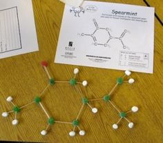 Picture of molecular models made in Alycia Zimmerman's class.