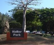 Haller Park (formerly Bamburi Nature Trail) is located South of the Bamburi cement plant along the Mombasa /Malindi highway. A product of the company's efforts, since 1971, to convert barren landscape of disused limestone quarries into vibrant and diverse ecosystem of forest, grasslands and ponds.   Currently, Haller Park plays host to a variety of wildlife including hippos, giraffes, buffalos, and antelopes as well as smaller mammals and birds.